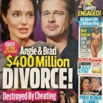 Brangelina Divorce